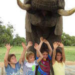 "Adventures With Elephants - Adventures With Elephants offer way more than the usual ""Touch and Feed' elephant experience"
