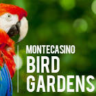 Montecasino Bird Garden
