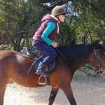 The IEA Elite - Private creche, primary and high school academy with regular interaction with horses, also offering pony parties, horse riding lessons, holiday camps, field trips and a kids club.