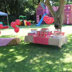 Bash - Party Planning services and party products