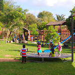 Singing Forest Montessori (Fourways) - An international nursery school where children pick their own organic fruit, learn to recycle and respect the environment, Wide variety of extra-murals and more.