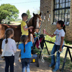 Camps-sleepover - Roly Stud pony camp