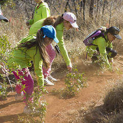 Walks - Eco walk at Thaba Eco Hotel