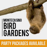 Montecasino - 2017 bird garden party packages