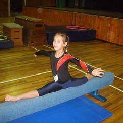 Sport - Park Lane Gymnastics