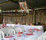 About Country Parties - Outdoor farm venue for all age: birthday & family gatherings, Christmas functions, workshops, team buildings, day conferences