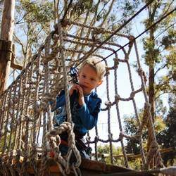 Acrobranch Pretoria - Not only is it all round fun, but it is a great activity to build confidence and coordination. Slide, balance, jump, crawl, dash, swing or stroll – our courses will test your physical ability, brainpower and balancing skills.
