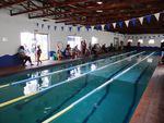Aqua Marine Aquatics Academy - Pool/ scuba diving parties & Swimming lessons for babies, kids & adults and aqua aerobics, scuba diving, cpr courses.