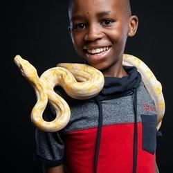Party Animals SA - Interactive Educational Animal Shows with Caiman Crocodile, Snakes, Tarantulas, Chinchilla, Hairless Rat, Blue-Tongue Skink, Tenrec, Ant Farm & Petsitting services
