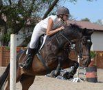 Byerley Park Stables - We are a family yard and We teach children,teens and adults to ride horses from complete novice to competitive level