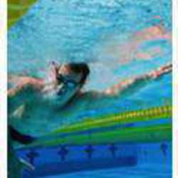 Caron's Swim School - Learn to Swim, stroke development, training and Coaching in Linden and Parkhurst, Johannesburg