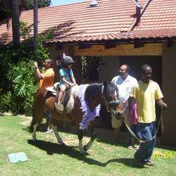 Caryn's Pony Parties - Mobile pony parties and petting zoo for kids parties and events.