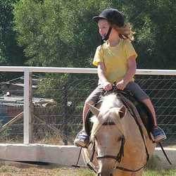 Carynton Stables - Mobile farmyard, petting zoo & ponies for kids parties, Horse riding lessons, stabling or half or full baiting horses, Holiday pony camps