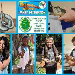 Chameleon Village Reptile Park - Reptile  park, zoo, arts & crafts market, restaurants, kids activities, play area, reptile shows and more.