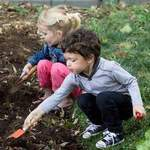 Cherry Tomatoes Gardening Club - Gardening club, kids outdoor activities, kids gardening, kids arts and crafts, educational activities