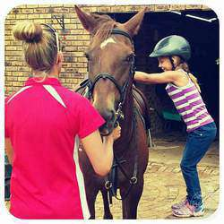 Chestnut Valley Stables - Horse riding lessons, holiday pony camps, pony parties, liveries
