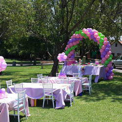 Crazy Parties - Party planning & decor services for kids parties, teen/tween parties, bridal & baby showers