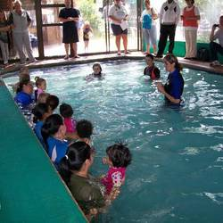 Dancing Dolphin Swimschool - Swimming lessons for babies, toddlers & adults, plus parent/baby classes