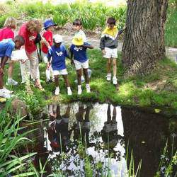 Delta Environmental Centre - Environmental centre for curriculum-linked outings, talks, school programmes & accredited teacher training