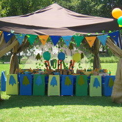 The Party Pros - Party planners offering full party services for all ages including party entertainment, decor, candy tables, party packs, catering, face painting, crafts, discos, tie-dying, amazing race, and many more