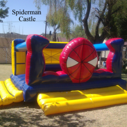 Fun Cakes & Castles - Cakes (Ice-cream or sponge) ,Cupcakes, Platters, Jumping Castles, Party Packs, Kiddies Parties