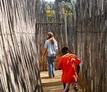 Honeydew A-maze-ing Mazes - Giant Maze Puzzles Outdoor Family Fun Parties Schools Teambuilding Weekend