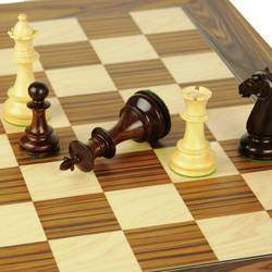 House of Chess  - Chess club, chess training, chess products, tournaments, holiday workshops for kids and adults of all ages.