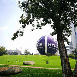 Hyundai Mushroom Farm Park  - Park, day trips, family outings, picnics, Hyundai hot air balloon