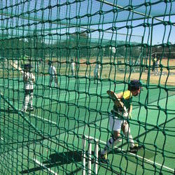 Cricket Mentor - Professional Cricket Coaching  for individuals, groups, school teams plusholiday clinics