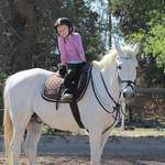 Sun Valley Stables - Teaching small children to be comfortable around ponies. Riding on lead rein in groups as well as basic pony care, grooming, feeding and handling. We also offer fabulous pony parties including play equipment.