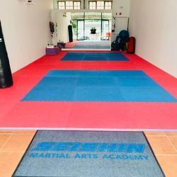 Seishin Martial Arts Academy - Karate Classes & Private Lessons to preschool, primary, high school children, special needs children and adults plus Karate Parties