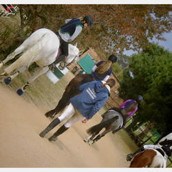Hillcrest Stables  - Horse Riding Lessons and Sanesa assistance and Corporate team building