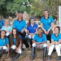 Johannesburg Equestrian Centre - Horse riding lessons for kids and adults