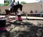 Johannesburg Equestrian Centre - Horse riding lessons, equitherapy, Pony camps, gymkana's, shows and holiday programs