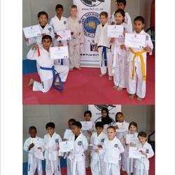 MTG Taekwon-Do,Fitness & Self Defence   - Taekwon-Do & Cardio Tkd Kickboxing, Martial arts for kids & adults locations around Johannesburg