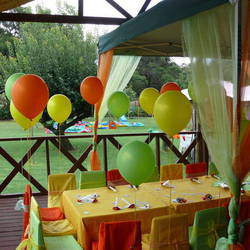 Kiddy-Up Party Venue - Party venue for birthdays and functions with pony rides, horses, animals, entertainment, play areas, catering and more.
