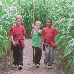 Honeydew A-maze-ing Mazes - Giant Maze Puzzles Outdoor Family Fun Parties Schools Teambuilding Weekend