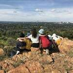 Melville Koppies Nature Reserve - Back to nature walks through indigenous grass and shrubs. Kids and parents can take guided tours or just wander around. A beautiful nature reserve and heritage site in the middle of Joburg.