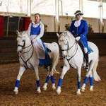South African Lipizzaners - Lipizzaner, horse riding, shows, performance, birthday party, fundraiser, corporate, private, function venue, Kids party, family fun, education tours,