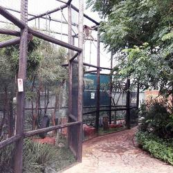 Lory Park Zoo - Lory Park is a privately run zoo and animal sanctuary situared in Midrand. We house for an assortment of exotic and indigenous mammals, reptiles, bird