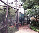 Lory Park Zoo - Lory Park is a privatly run zoo and animal sanctuary situared in Midrand. We house for an assortment of exotic and indigenous mammals, reptiles, bird