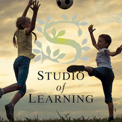 Studio of Learning - Blairgowrie Randburg - An independent learning centre for learners who struggle in a mainstream environment. Individualised learning in small classes.  Grade 1 – 12. Mainstream curriculum.  Remedial assistance offered.