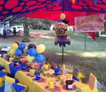 Dream Parties - Indoor & outdoor party venue plus party planning packages for your kids dream