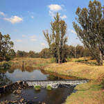 Modderfontein Nature Reserve - Guided walk through Modderfontein Nature Reserve with a knowledgeable guide.