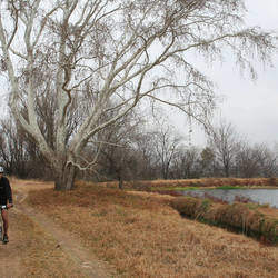 Northern Farm -  This is one of Johannesburg's best-kept secrets and offers over 2500ha of beautiful green grasslands and woodlands to explore.Many different recreational users i.e. cyclists, horse riders, hikers and birders enjoy relaxing in this farm like space.