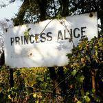Princess Alice Adoption Home - A temporary place of safety for 30 babies consented for adoption or abandoned, as well as birth moms in crisis.