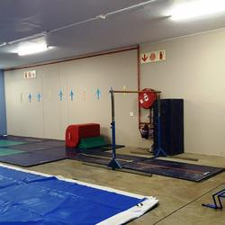Park Lane Gymnastics - Gymnastics classes for girls from 3 to 13 & boys aged 3 to 5