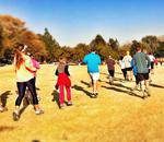 Alberts Farm  - Alberts farm Conservancy for walks in nature, hiking, orienteering in Albertskroon, Northcliff.