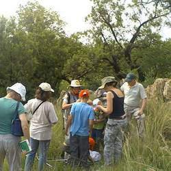 Rhenosterspruit Nature Conservancy - Environmental walks and talks in Rhenosterspruit Nature Conservancy.