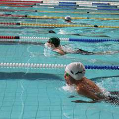 Sport - Roy Lotkins swimming school